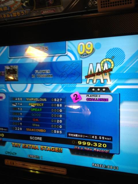 http://aaronin.jp/snaaa/brosoniaaafloweros.jpg